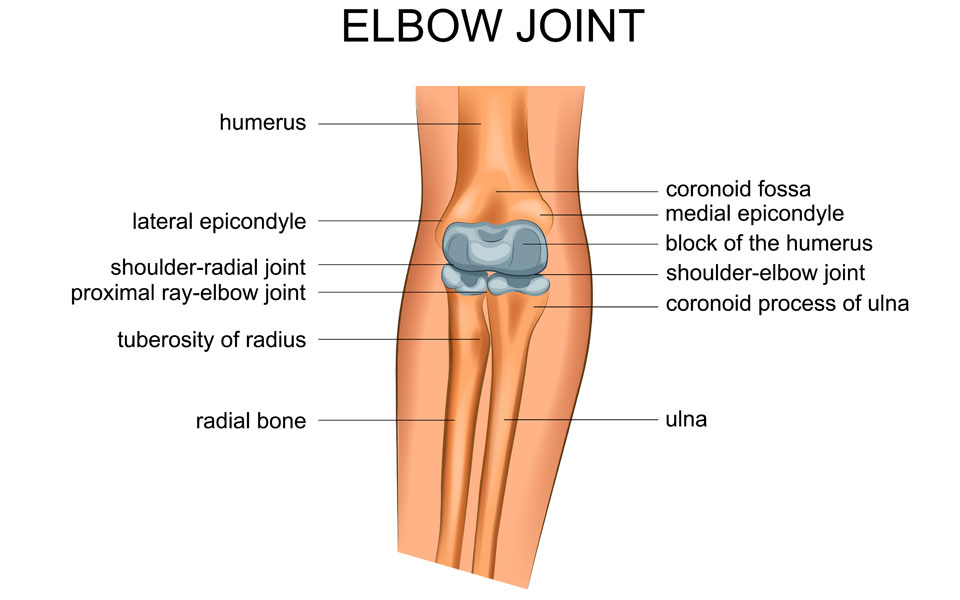 Osteoarthritis of the elbow joint