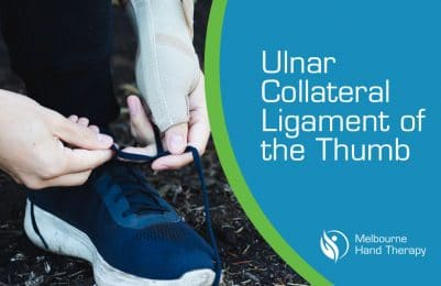 Ulnar Collateral Ligament Of The Thumb
